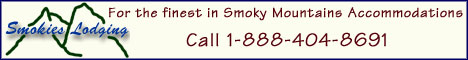 Smoky Mountain Cabin Rentals - Vacation in the Smokies Banner